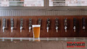Diferencia entre cerveza IPA y APA